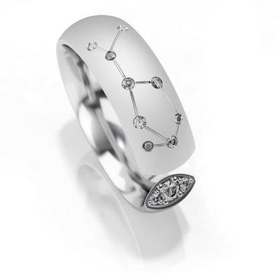 Trouwringen sterrenbeeld Waterman in zilver met diamant(en) per stuk