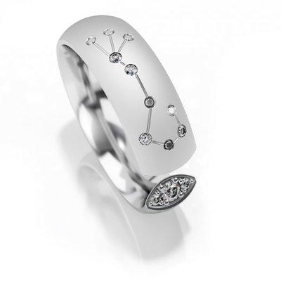Trouwringen sterrenbeeld Schorpioen in zilver met diamant(en) per stuk
