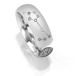 Trouwringen sterrenbeeld Vissen in zilver met diamant(en) per stuk