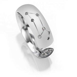 Trouwringen sterrenbeeld Leeuw in zilver met diamant(en) per stuk