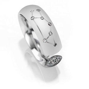 Trouwringen sterrenbeeld Boogschutter in zilver met diamant(en) per stuk