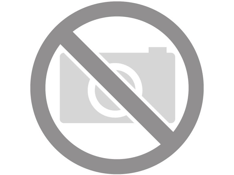 Trouwringen in 14/18 karaat witgoud per paar vanaf